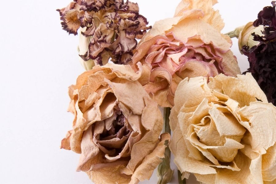 How To  Use Your Dried Wedding Flowers
